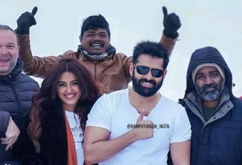 Telugu Red Movie Cast and Crew